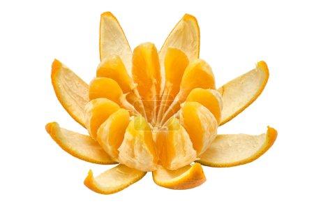 Photo pour Section orange avec un cuir sur fond blanc - image libre de droit