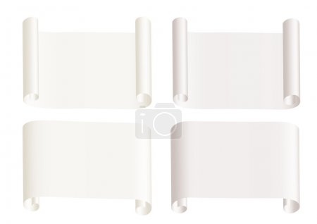 Paper roll isolated on the white background...