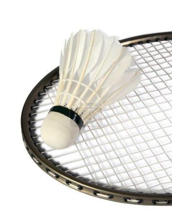 Shuttlecocks on a racket for a badminton