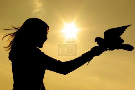 Photo pour Fille et pigeon au coucher du soleil - image libre de droit