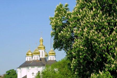 Photo pour La coupole de l'église Ekateriniska à Tchernigov, Ukraine - monument du 17-ème siècle - image libre de droit