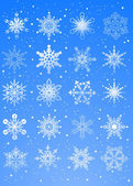 20 beautiful cold crystal snowflakes