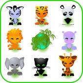 Cute Safari Animal Set Vector Illustration