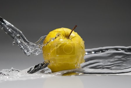 Photo for Fresh water splash on yellow apple on gradient background - Royalty Free Image