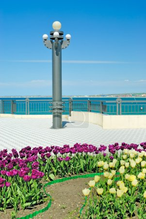 Lamp post and flower bed on quay