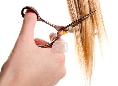 Scissors cutting lock of hair