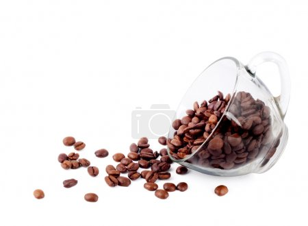 Photo for Cup of coffee with seed isolated on a white background - Royalty Free Image