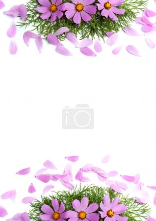 Flowers with petals