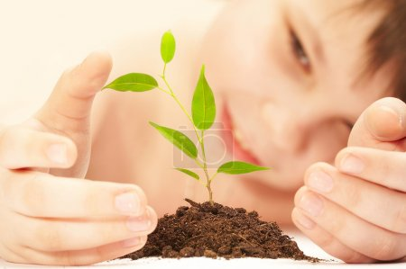 Photo for The boy observes cultivation of a young plant. - Royalty Free Image