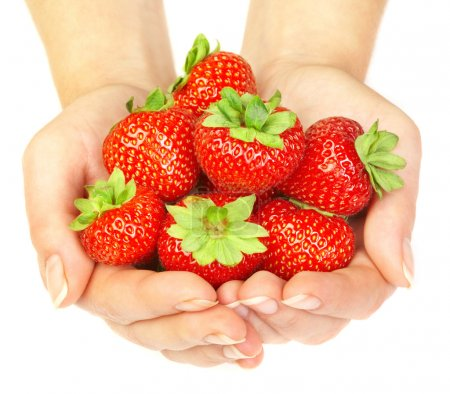 Photo for Strawberry in hands on a white background - Royalty Free Image