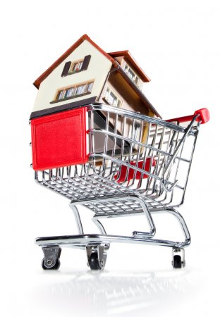House and shopping cart
