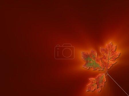 Glowing oak leaves