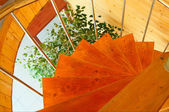 Spiral staircase in the modern wooden