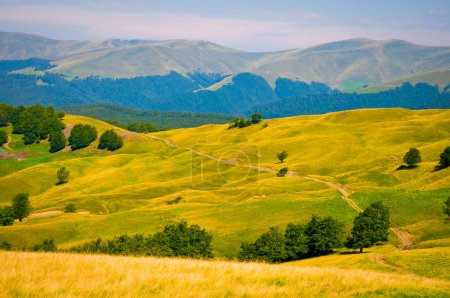 Ukraine Carpathian Mountain