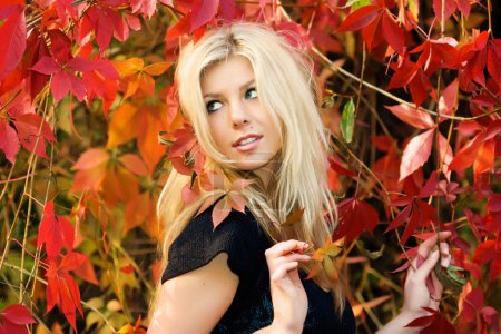 Photo for Beautiful young woman holding red leaves - Royalty Free Image