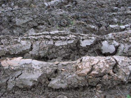 Rustic arable land