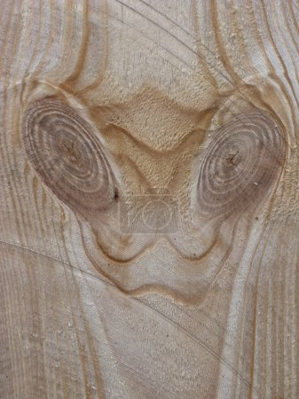 Close up of fresh wooden saw cut surface with knot...
