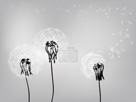 Illustration for Vector. Silhouettes of dandelions in the wind. - Royalty Free Image