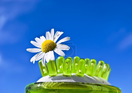Photo for Abstract picture with daisy flower in massage brush in blue sky - Royalty Free Image