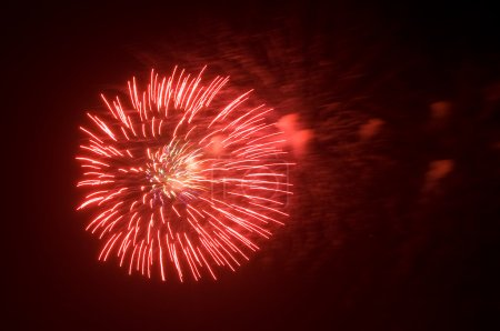 Photo for Colorful fireworks on night sky background - Royalty Free Image