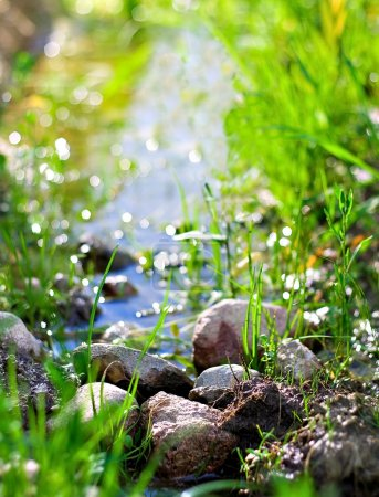 Photo for Stones lie in a stream - Royalty Free Image
