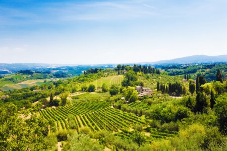 paysage d'Italie Toscane traditionnelle