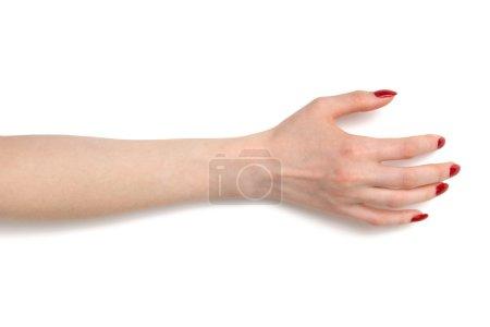 Woman taking hand