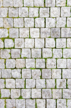 Stone pavement with green grass