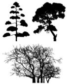 Three tree silhouettes on white