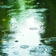 Puddle with splashes and reflections. Sad autumn m...