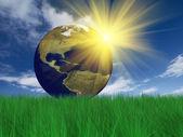 Globe sur l'herbe