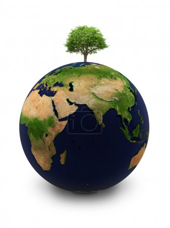 The Earth with a tree