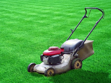 Lawn mower on green grass backyard