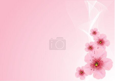 Illustration for Vector Cherry blossom arrangement, against pink background - Royalty Free Image