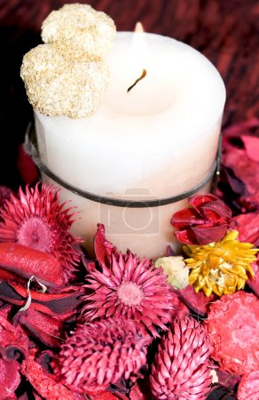 Photo for Christmas decoration with candle and dry flowers / red and yellow - Royalty Free Image