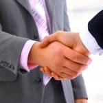 Business partners handshaking in office