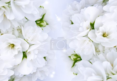 Photo for Beautiful white jasmine flowers with magic lights - Royalty Free Image
