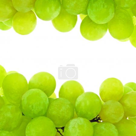 Photo for Green Grape Background With Space For Text - Royalty Free Image