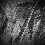 Dark Wood Texture...