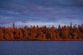 Autumn Lake in the morning