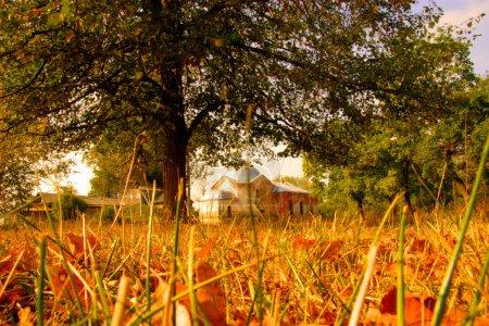 Photo pour Paysage d'automne avec l'église - image libre de droit