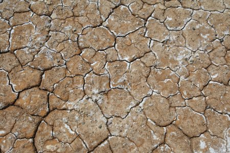 Earth which dried out