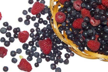 Bilberries and raspberries, summer fruit