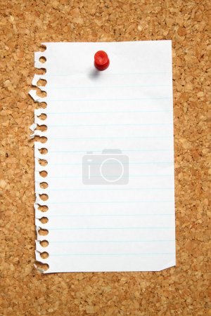 Blank page from a notebook.