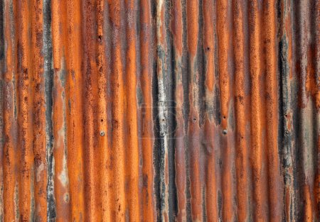 Rusty old corrugated fence.