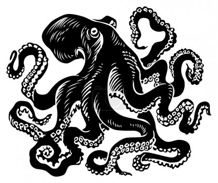 Illustration for Octopus.black and white vector illustration - Royalty Free Image