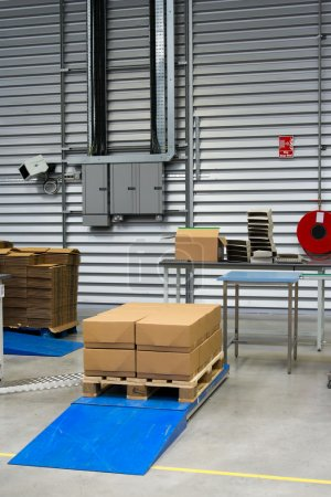 Cartons in packaging plant