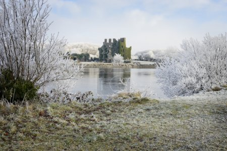 Castle ruins and trees covered by frost