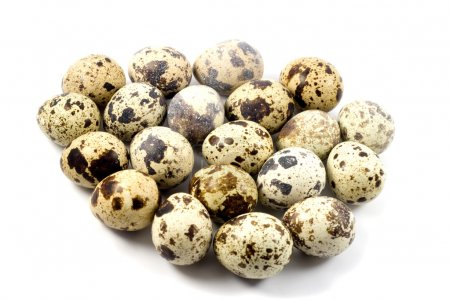 Quail eggs in egg shape