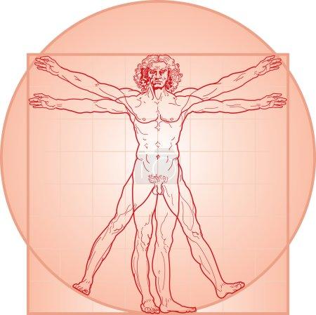 The Vitruvian man Red version